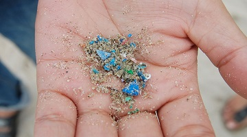 Microplastics 'abundant' in remote polar seas