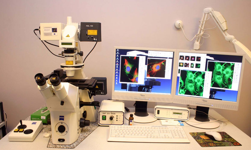 CEORG Zeiss microscope